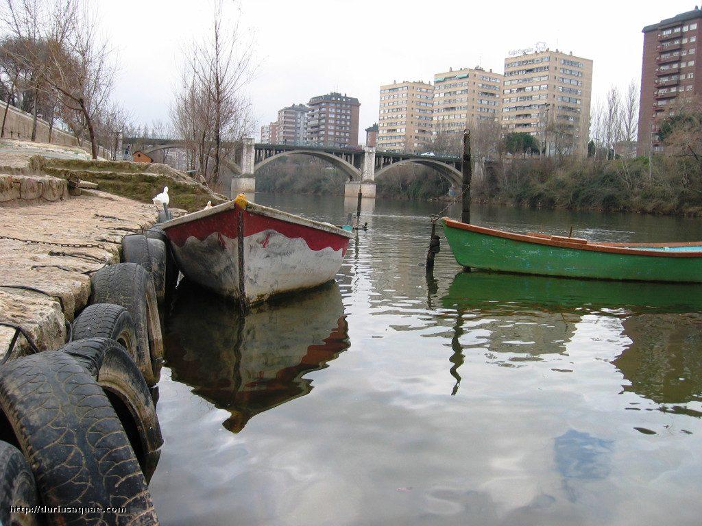 Durius Aquae, barcas en el Pisuerga