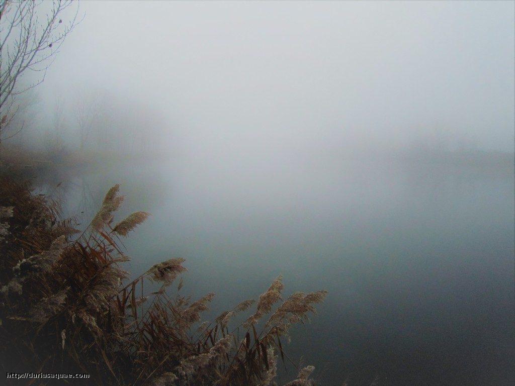 Durius Aquae; El Duero ya en invierno