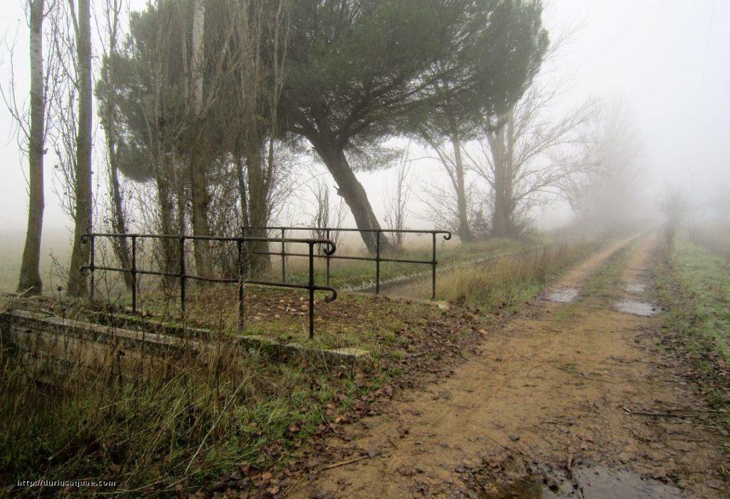 Durius Aquae; El canal marca el límite del espacio natural Riberas de Castronuño