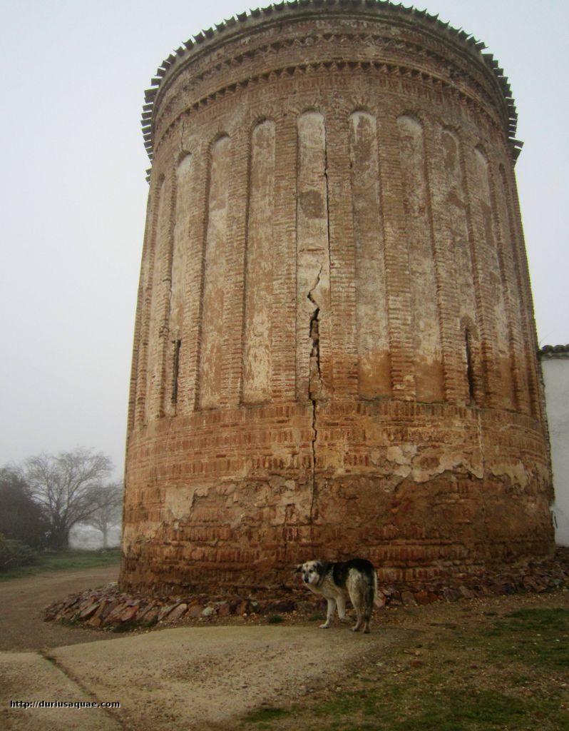 Durius Aquae, Torre Duero