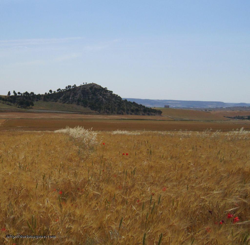 Cuesta Redonda y el Valle del Pozo Moza