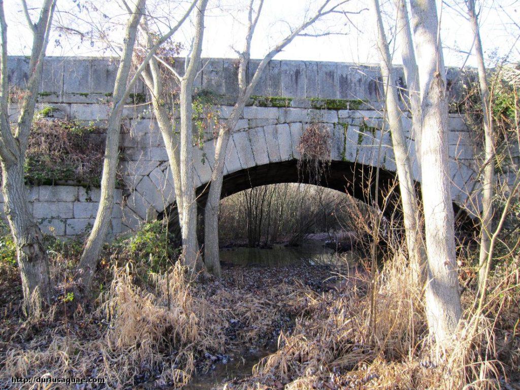 Durius Aquae,Granítico puente de Almarza