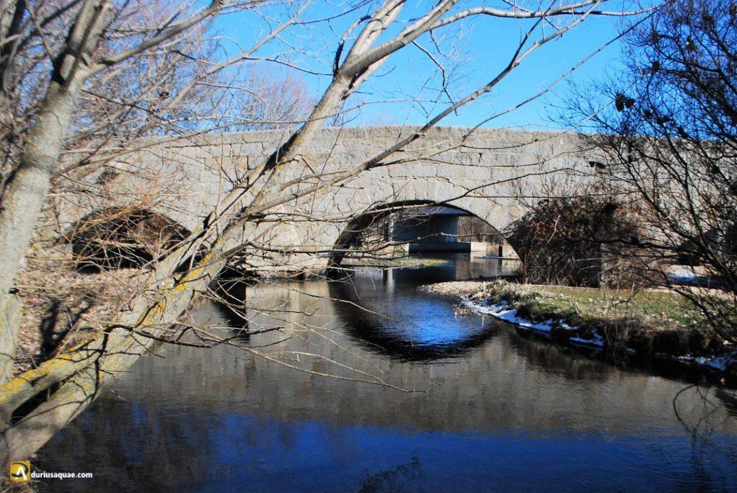 Durius Aquae: Puente romano de Los Cobos
