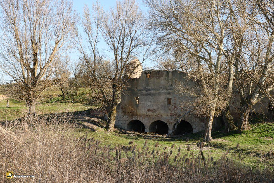 Durius Aquae, molino nuevo en Villalar