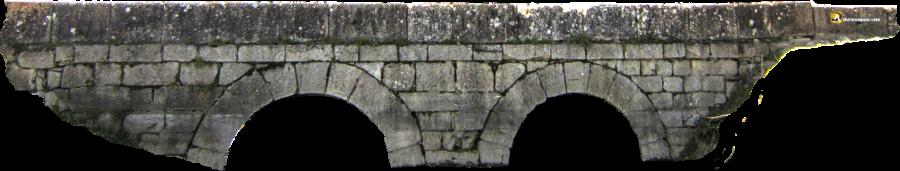 Durius Aquae, puente en Vega de Valdetronco
