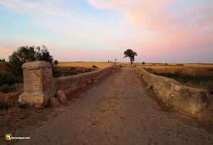 Durius Aquae: Puente en Tierra de Campos
