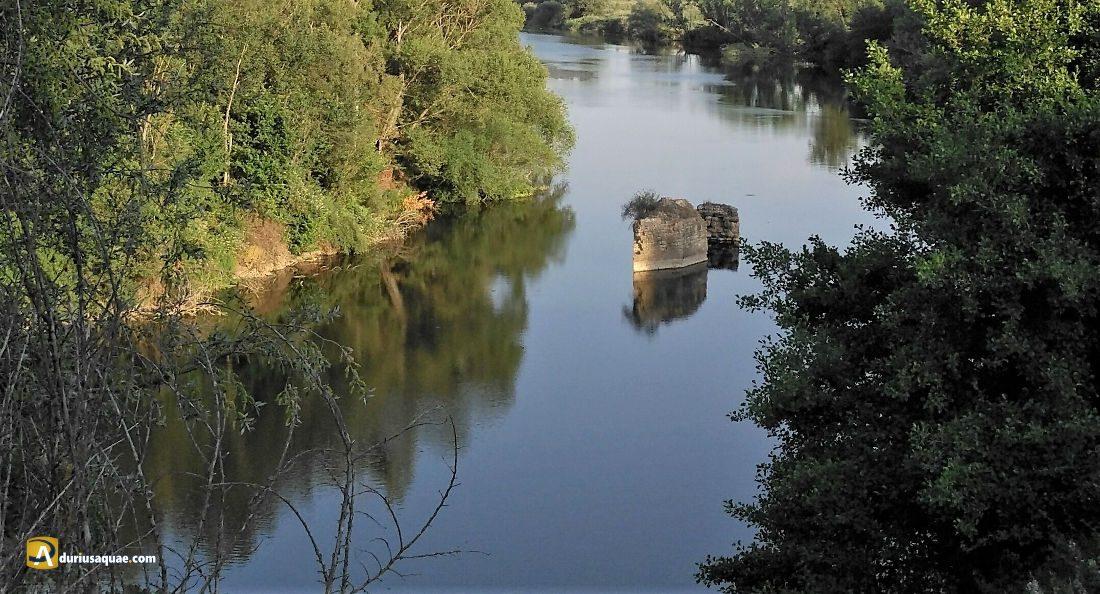 Durius Aquae: Meandro del Soto de Medinilla y sus viejas aceñas navegando estáticas contracorriente desde hace cientos de años