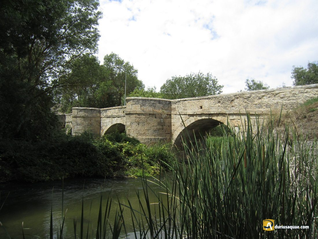 Durius Aquae: puente de Laguna de Contreras