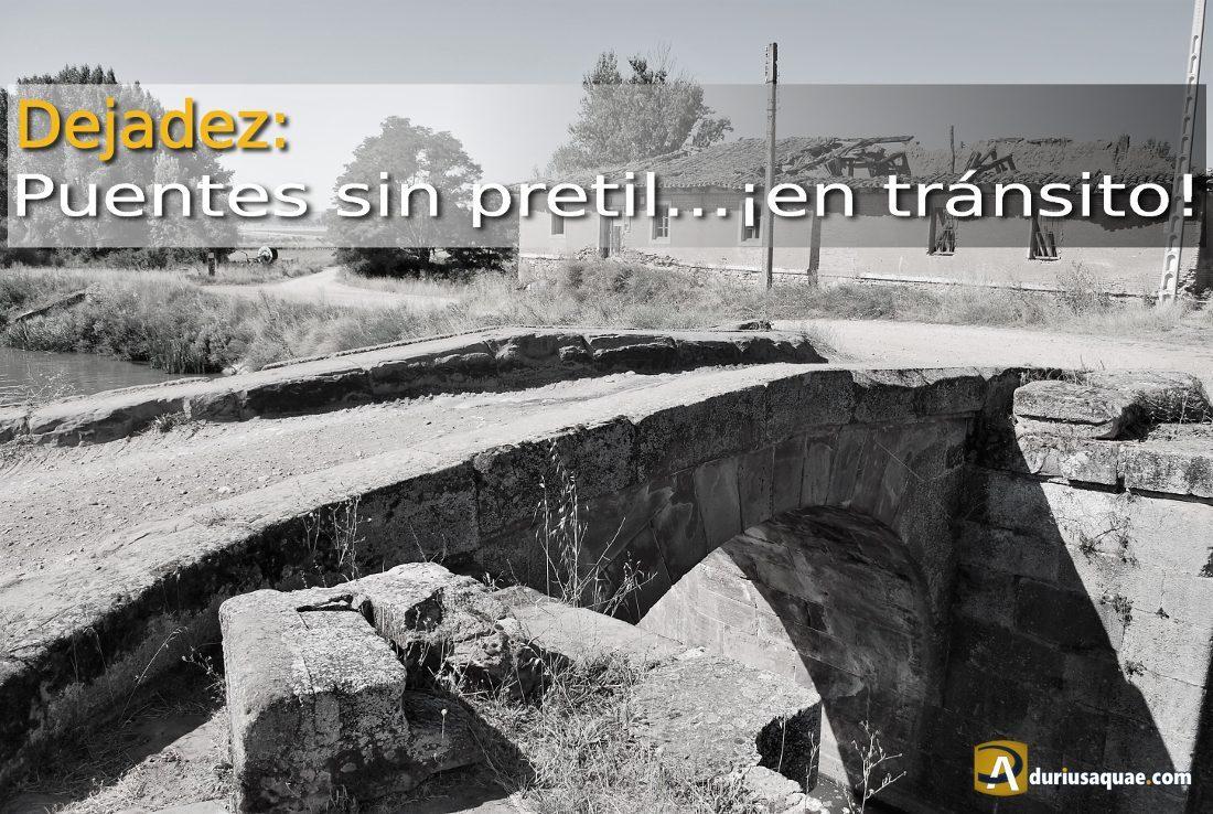 Dejadez en el Canal de Castilla