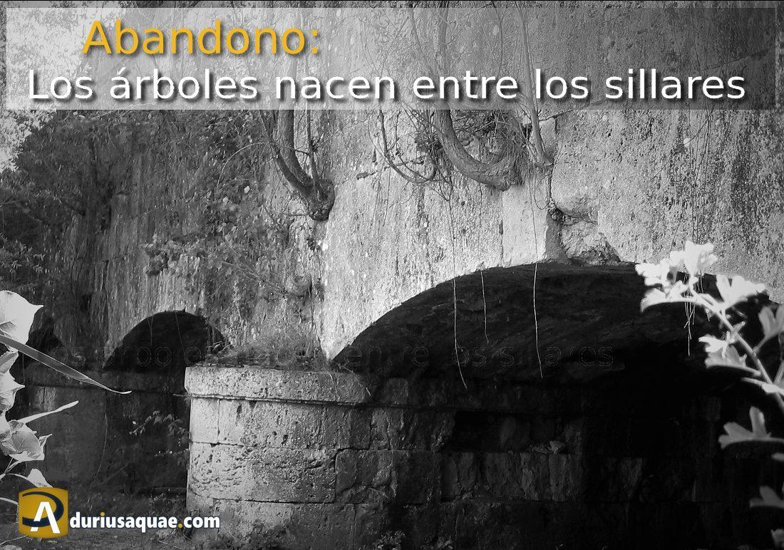 Durius Aquae: Canal de Castilla: acueducto