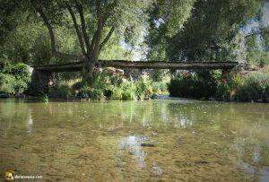 Antiguo puente en Rábano con troncos de sabina. Valladolid