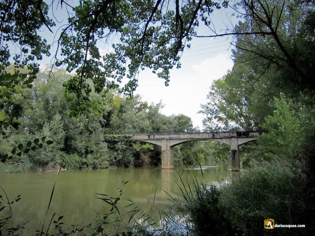 Durius Aquae: Donde el Valimón llega al Duero
