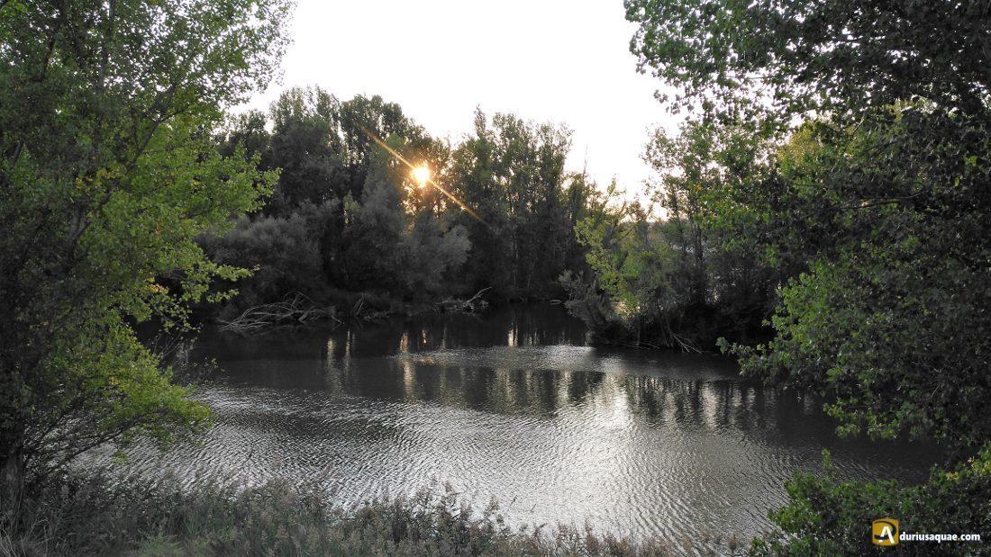 Durius Aquae: confluencia Duero-Pisuerga
