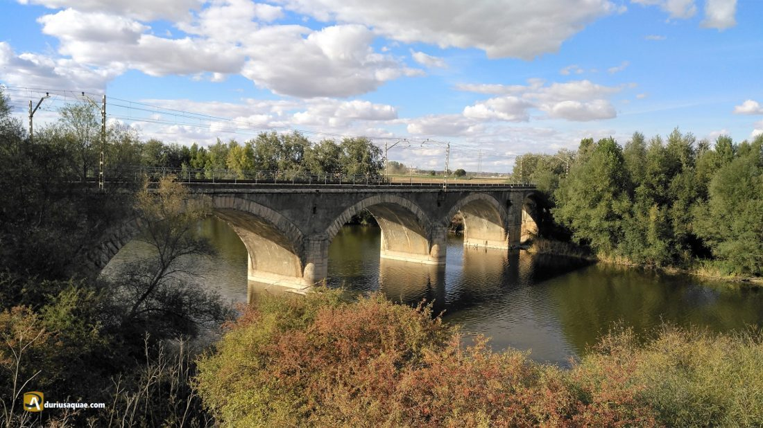 Puente ferroviario Príncipe Alfonso, sobre el Pisuerga.