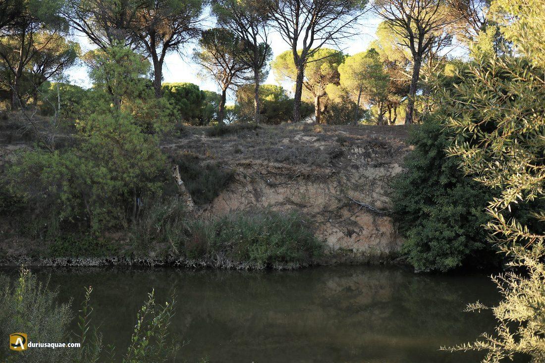 El Pesquerón, Laguna de Duero