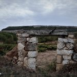 Majuelo en Valdezate Burgos
