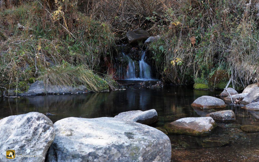 Un arroyo ¡con agua!