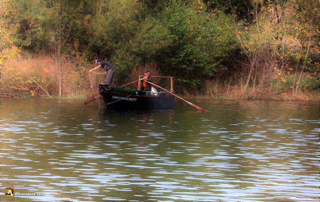 Pescadores del Douro