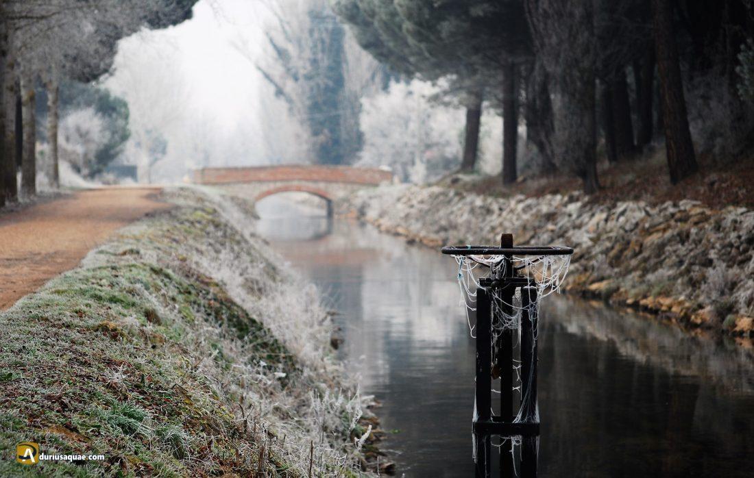 Durius Aquae: Canal del Duero en la fría madrugada
