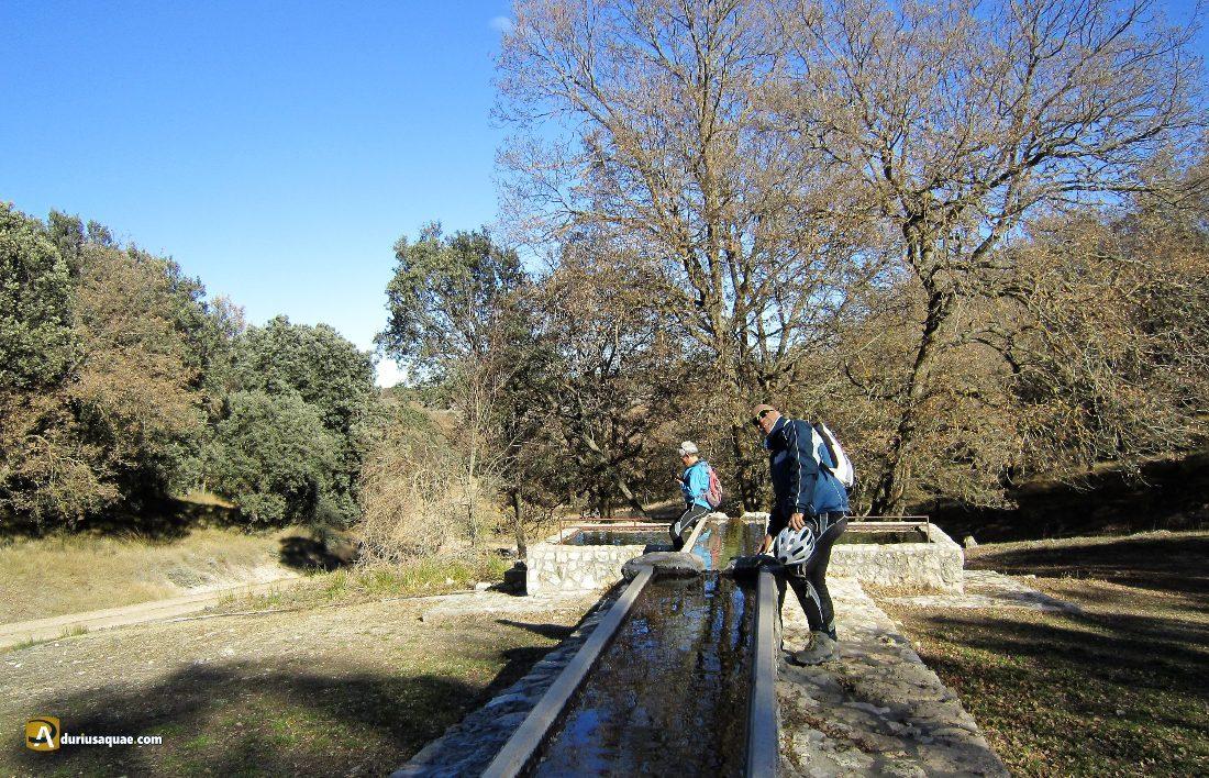 Durius Aquae: Fuente de Valdileja, en Vertavillo
