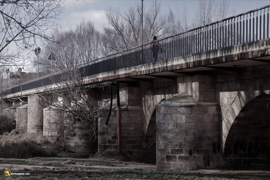 Durius Aquae: Alrededor del puente imponente: aguas, caminos, historia y paisaje