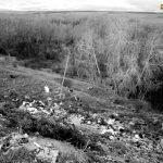 Basurero en la ladera de Castrobol