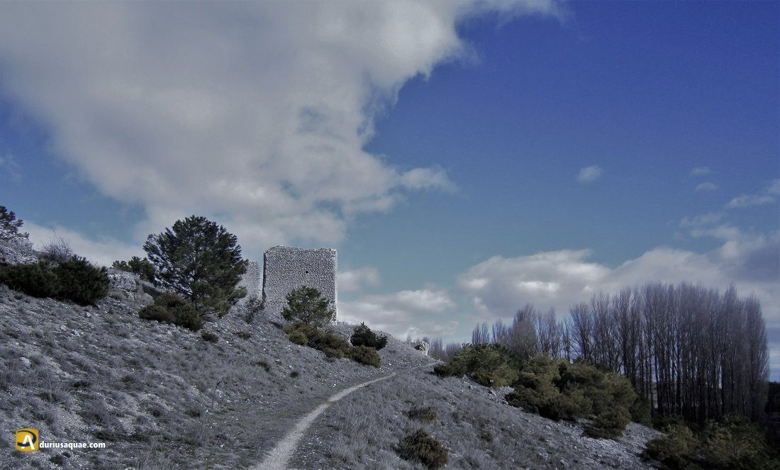 Durius Aquae: Torreón en Minguela