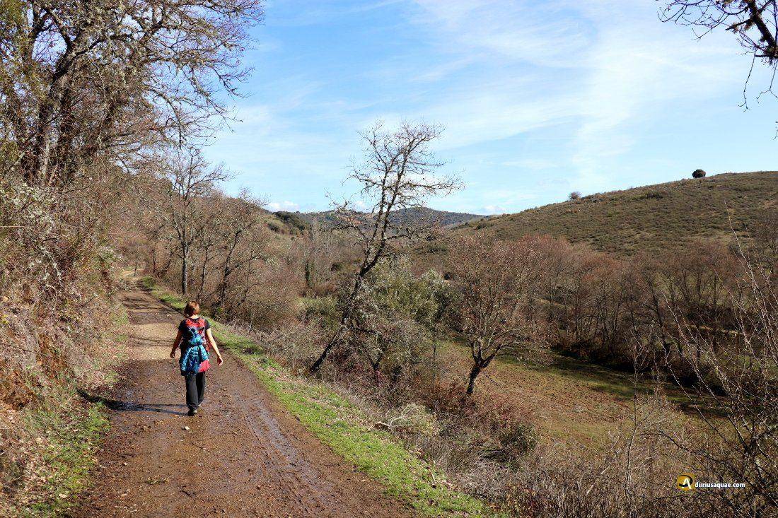 Durius Aquae: Valle del río Onor