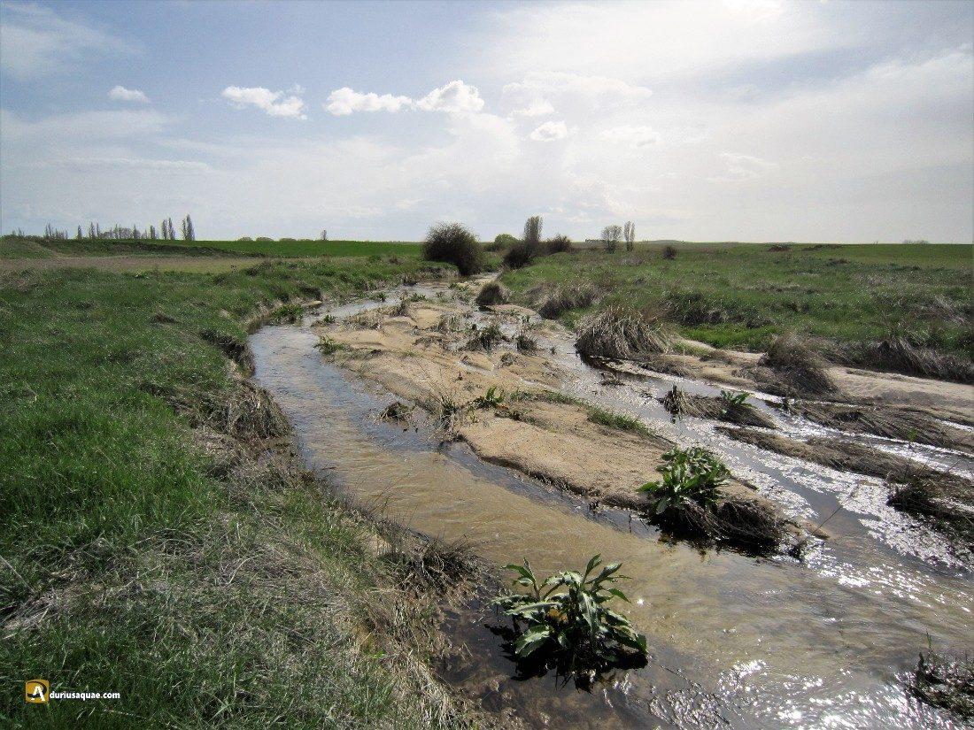 Durius Aquae: Zapardiel; muy joven pierde su valle y su ribera