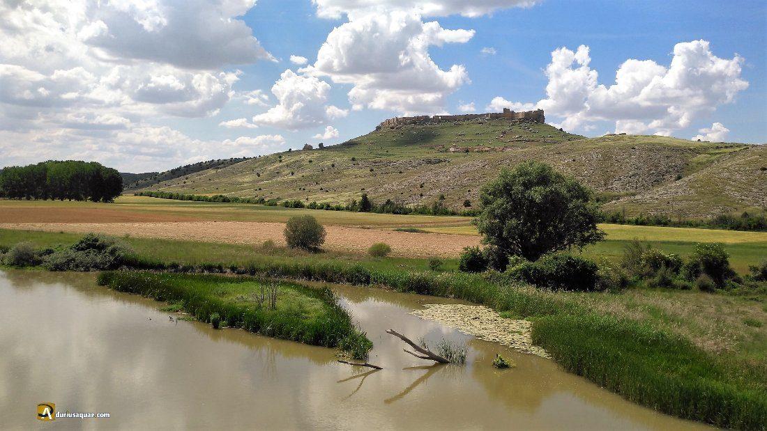 Durius Aquae: Impresionantes el Duero y Gormáz