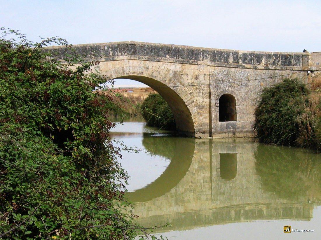 Durius Aquae: Puente de San Juan, sobre el Ramal de Campos