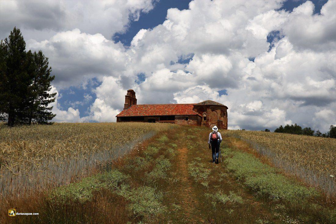Durius Aquae: ermita de San Roque