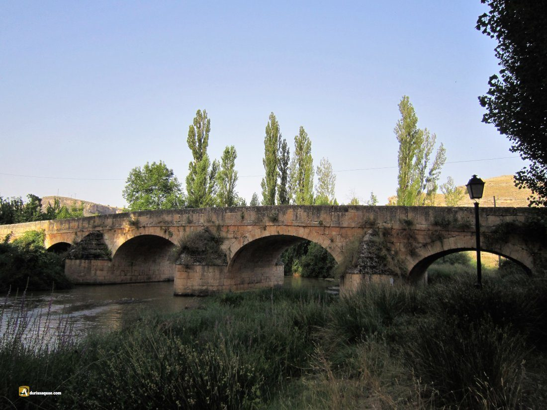 Durius Aquae: Hermoso puente de Montejo, sobre el Riaza