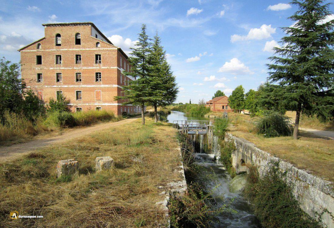Durius Aquae: La 37 y su imponente fábrica de harinas