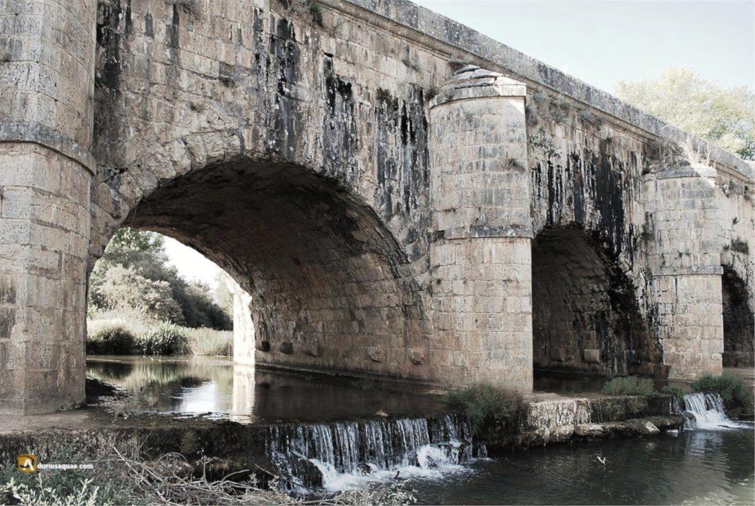 Durius Aquae: acueducto de Abánades
