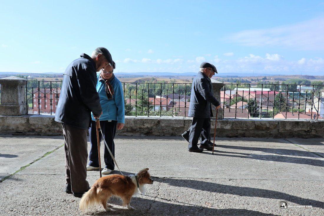 Durius Aquae: antiguas murallas de Astorga
