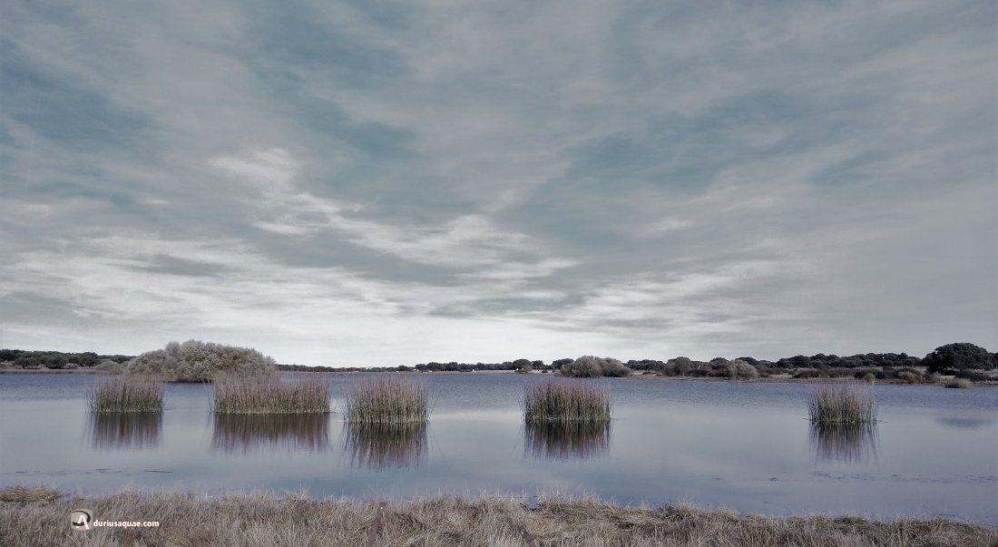 Durius Aquae: La Laguna del Cristo