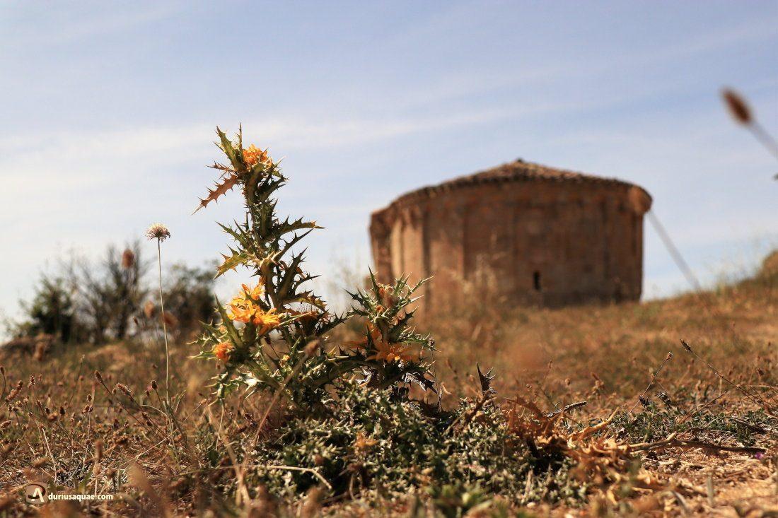 Durius Aquae: Ermita de San Salvador, Santibañez de Esgueva. El románico forma parte del paisaje