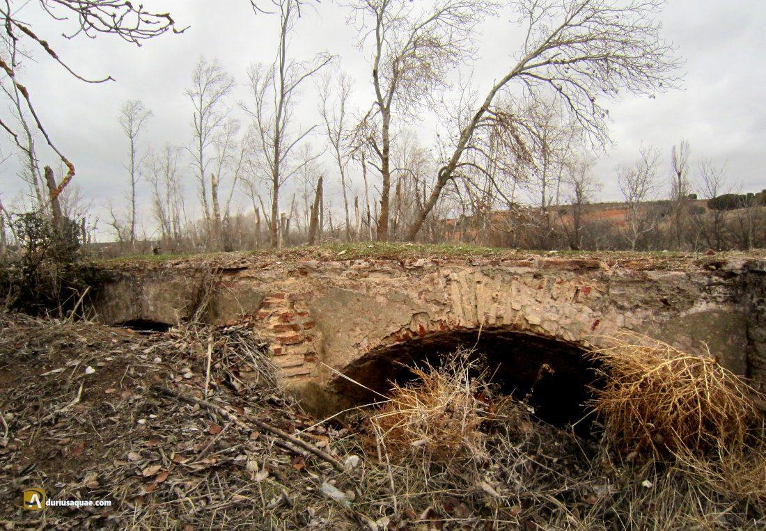 Durius Aquae: restos sepultados del molino del Anís o del Trabancos