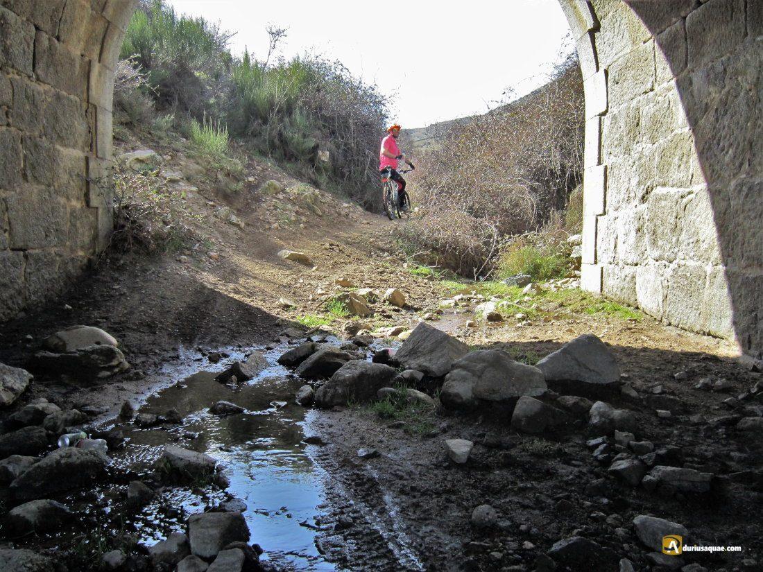 Durius Aquae: Arroyo Cañada de Carriles