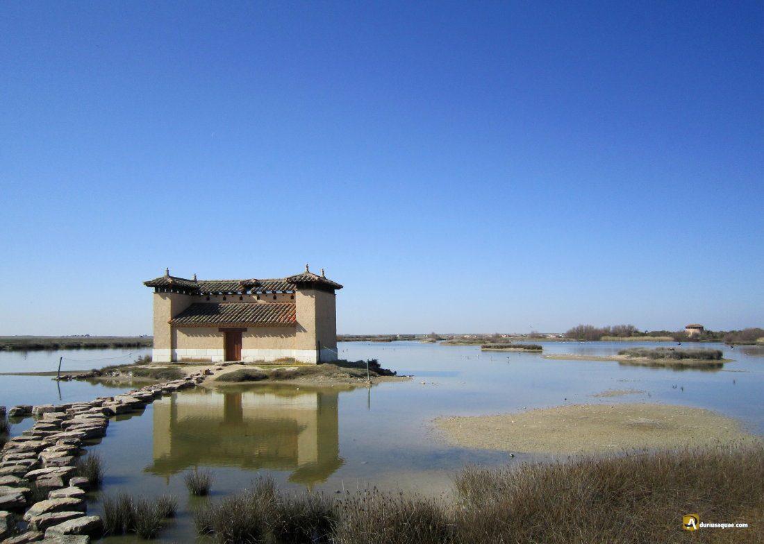 Durius Aquae: Casa del parque Reserva natural de Villafáfila
