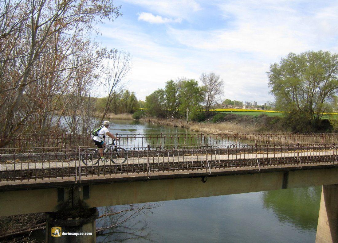 Durius Aquae: viejo puente en Soto de Cerrato