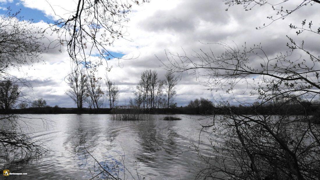 Durius Aquae: río Tormes