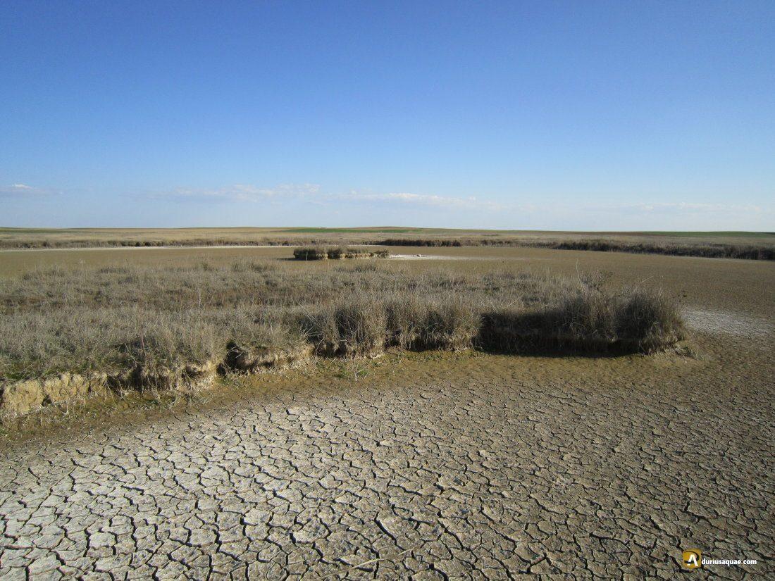 Durius Aquae: río Salado