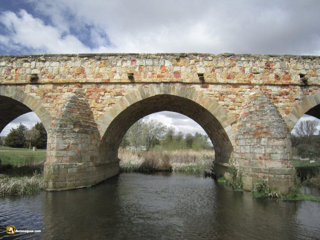 Durius Aquae: Eterno y colorido Puente Romano