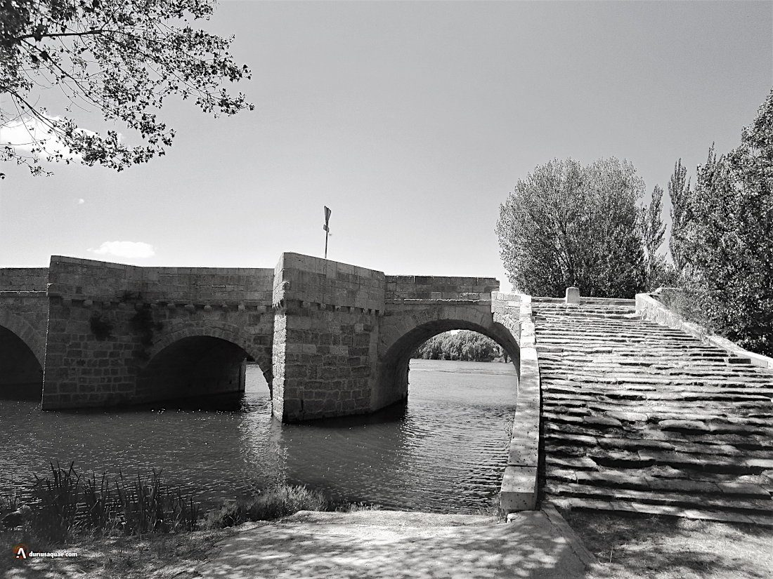 Durius Aquae: Puente de Torquemada