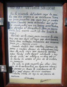 Texto dedicado al Pino Andante