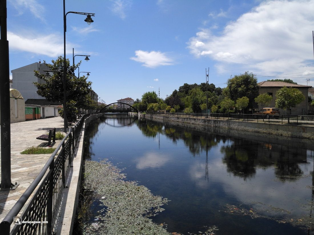 Durius Aquae: Támega, encauzado en Verín