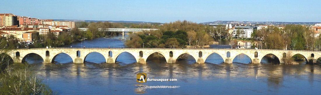 Duerius Aquae: puente de Piedra en Zamora