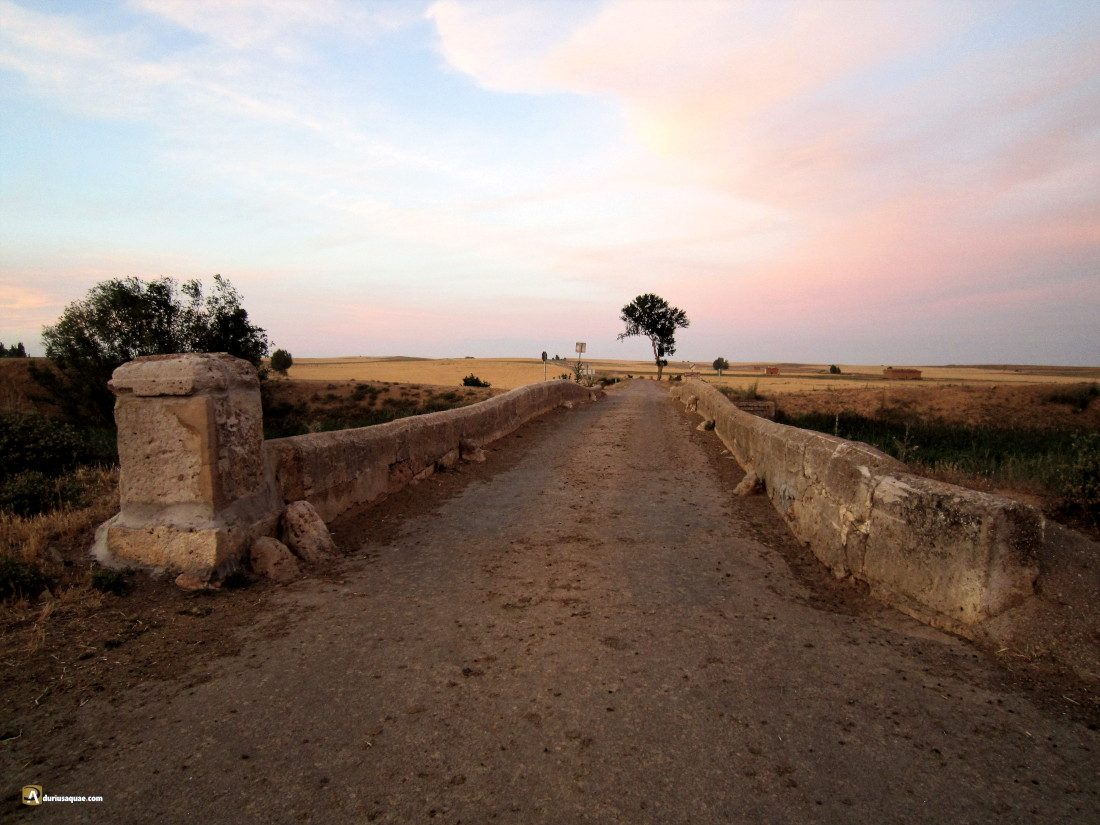 Durius Aqaue: Puente en el Sequillo, Boadilla de Rioseco